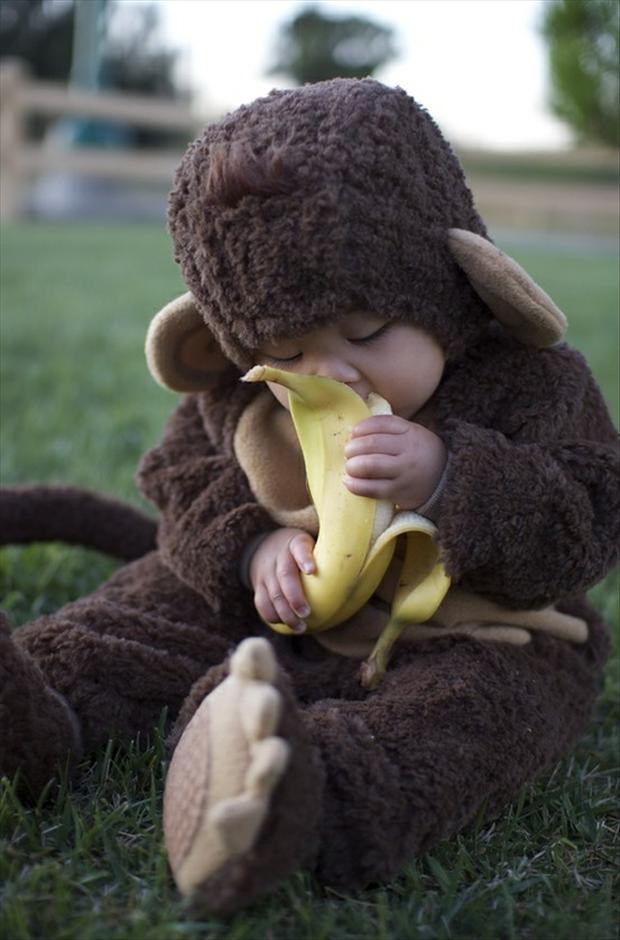 Cute baby Monkey costumes
