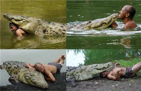 When a Man and a Crocodile become Best Friends
